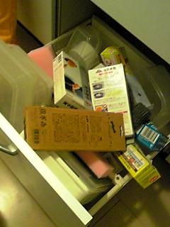 20080908rinitazuradaidokoro2.JPG